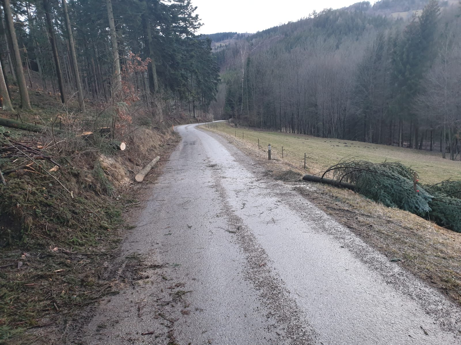 2019_03_10_T1-Sturmschaden_Pölla_4